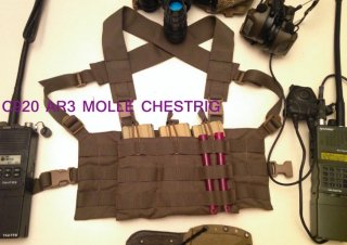 C920 MOLLE CHES TRIG
