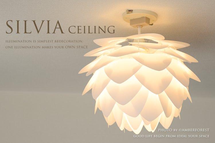 SILVIA mini シルヴィアミニ