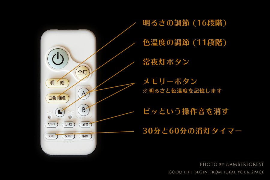 紅葉 [TYS-34M] Fores 林工芸
