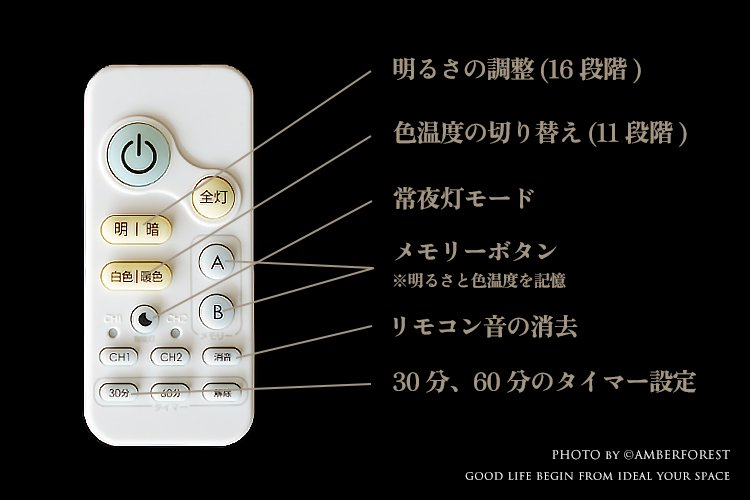 朧月 [CL-30] Fores 林工芸