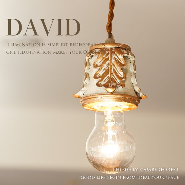 DAVID [GF020]