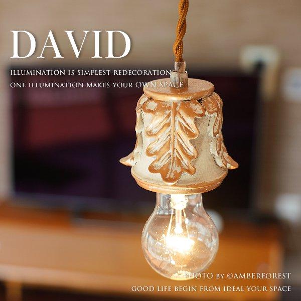 DAVID [GF020] HARVEST