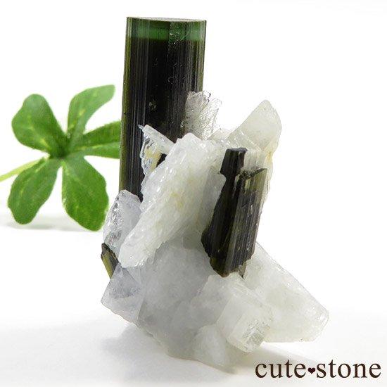 パキスタン産 グリーンキャップトルマリン 13gの写真0 cute stone