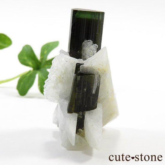 パキスタン産 グリーンキャップトルマリン 13gの写真1 cute stone