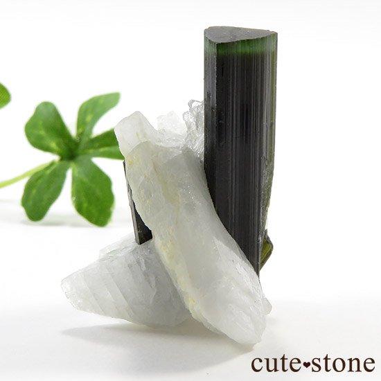 パキスタン産 グリーンキャップトルマリン 13gの写真2 cute stone