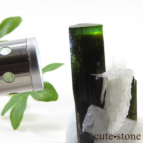 パキスタン産 グリーンキャップトルマリン 13gの写真3 cute stone