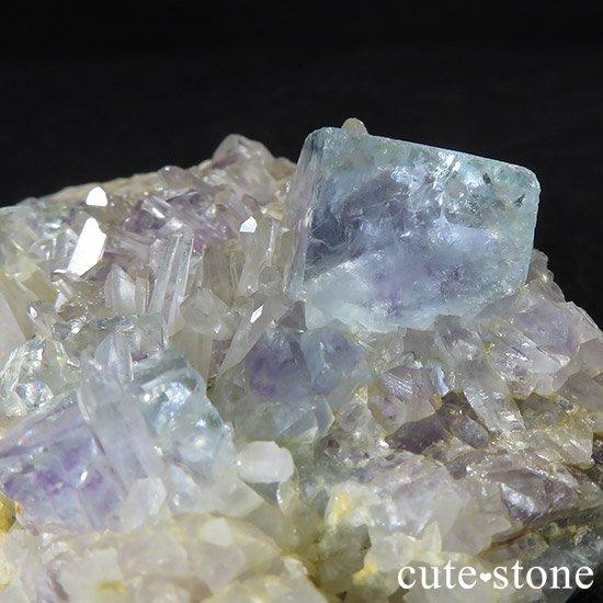 内モンゴル産 フローライトと水晶の共生標本(原石)の写真3 cute stone