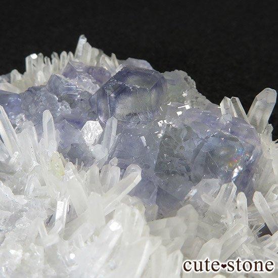 福建省産 フローライトと水晶の共生標本(原石)の写真5 cute stone