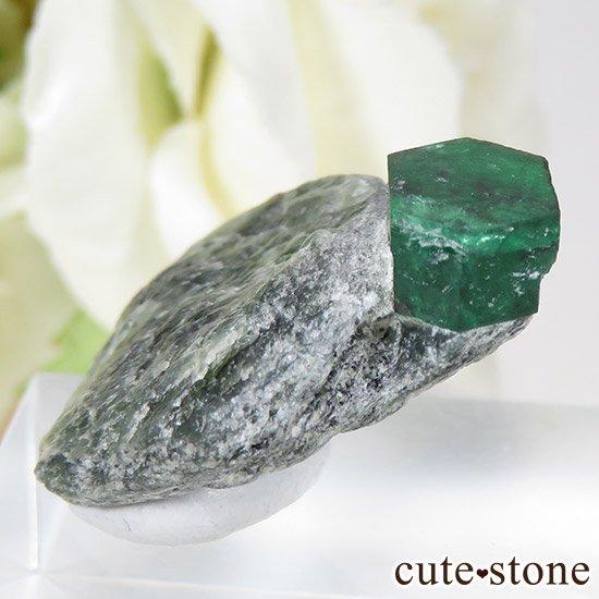 パキスタン スワート産の母岩付きエメラルドの原石(標本)の写真0 cute stone