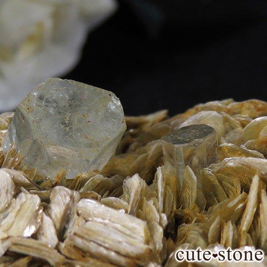 パキスタン産アクアマリン 母岩付き結晶(原石)199gの写真3 cute stone