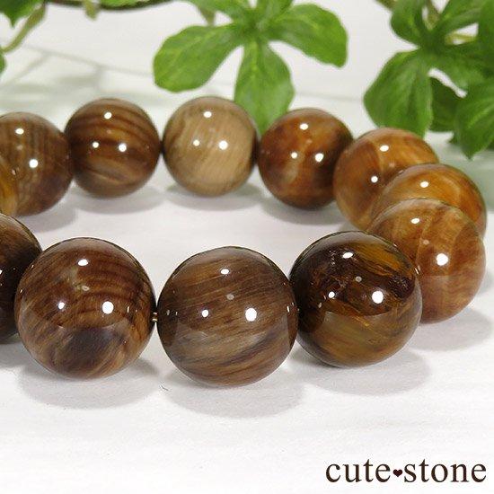 ペトリファイドウッド(珪化木)のブレスレット 17.5mmの写真0 cute stone