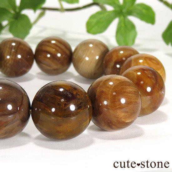 ペトリファイドウッド(珪化木)のブレスレット 17.5mmの写真2 cute stone