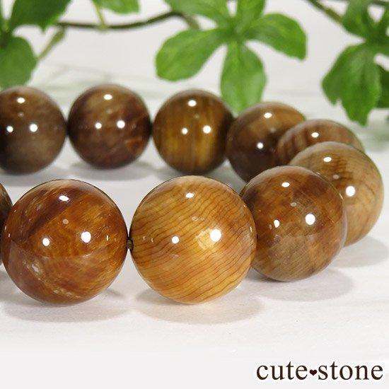 ペトリファイドウッド(珪化木)のブレスレット 17.5mmの写真3 cute stone