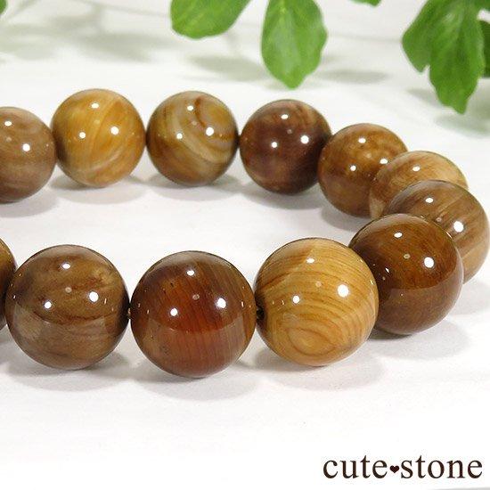 ペトリファイドウッド(珪化木)のブレスレット 13mmの写真0 cute stone