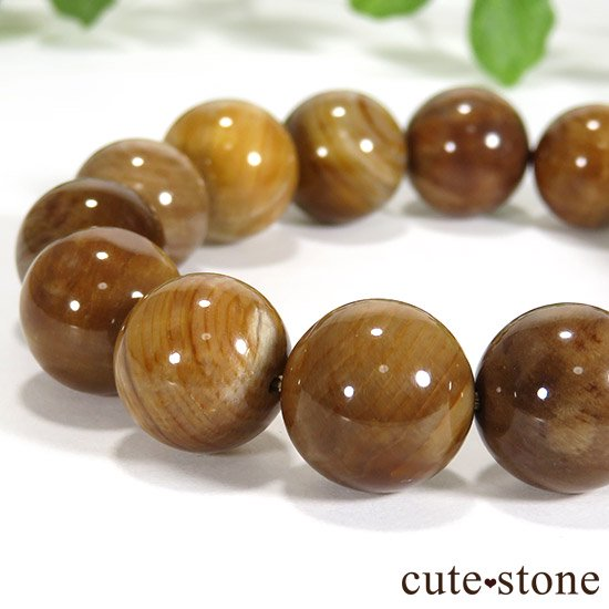 ペトリファイドウッド(珪化木)のブレスレット 13mmの写真1 cute stone