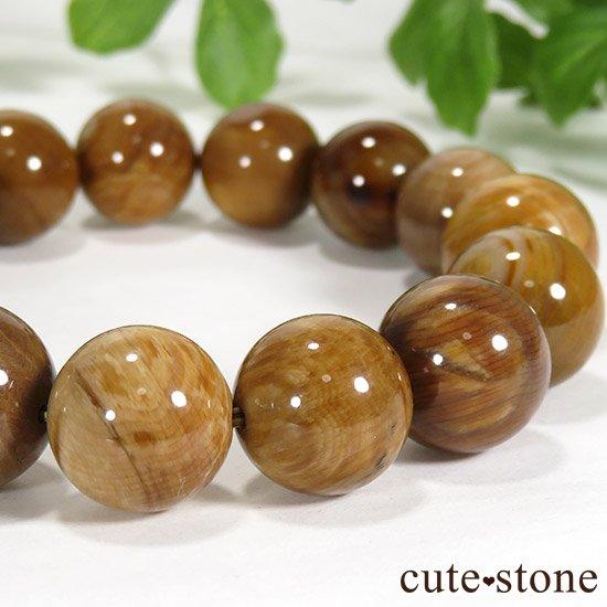 ペトリファイドウッド(珪化木)のブレスレット 13mmの写真2 cute stone