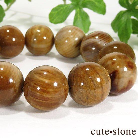 ペトリファイドウッド(珪化木)のブレスレット 18mmの写真0 cute stone