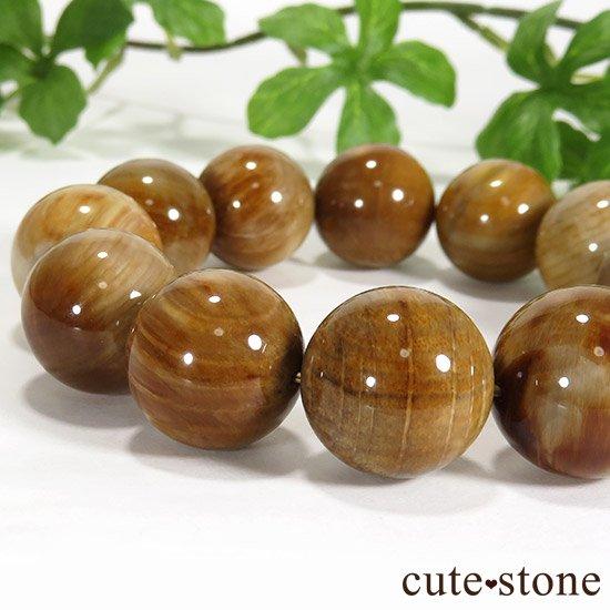 ペトリファイドウッド(珪化木)のブレスレット 18mmの写真1 cute stone