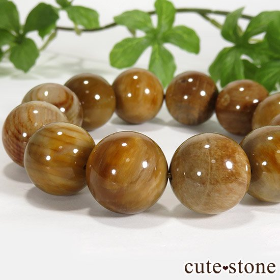 ペトリファイドウッド(珪化木)のブレスレット 18mmの写真2 cute stone