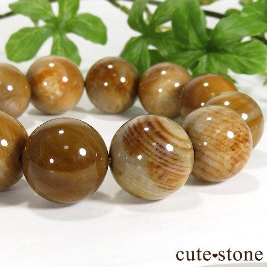 ペトリファイドウッド(珪化木)のブレスレット 18mmの写真3 cute stone