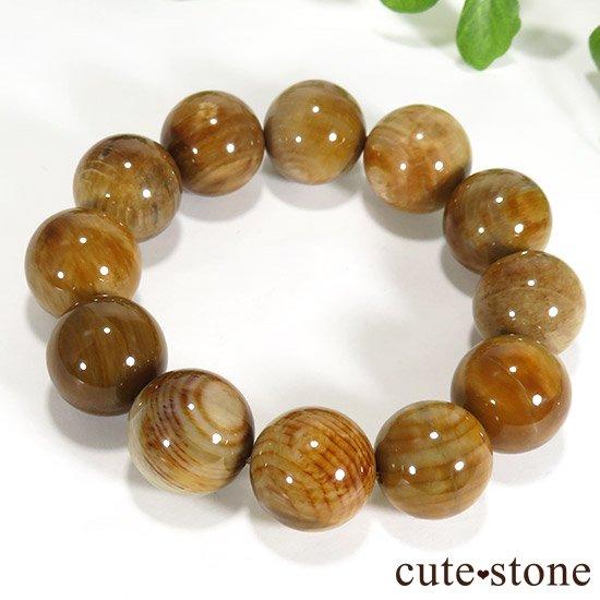 ペトリファイドウッド(珪化木)のブレスレット 18mmの写真4 cute stone