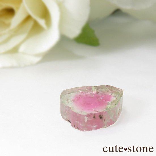 アフガニスタン産 ウォーターメロントルマリンのスライス(原石)3.6ctの写真1 cute stone
