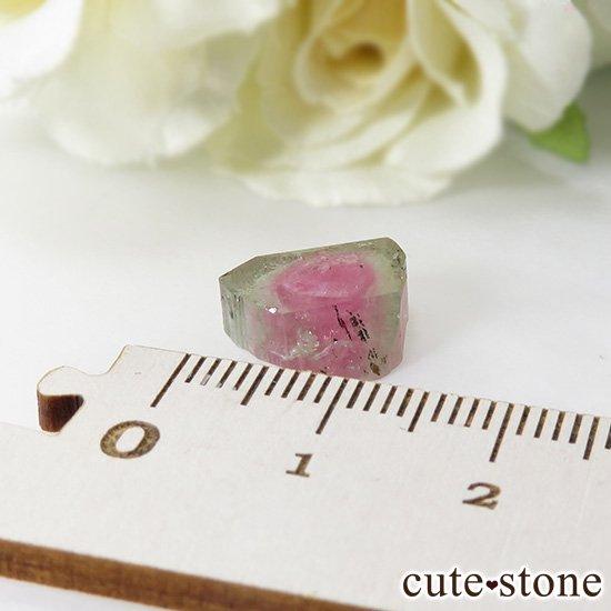 アフガニスタン産 ウォーターメロントルマリンのスライス(原石)5.7ctの写真2 cute stone