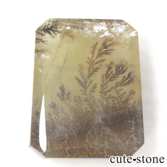 マダガスカル産 デンドリティッククォーツのルース 18.6gの写真0 cute stone
