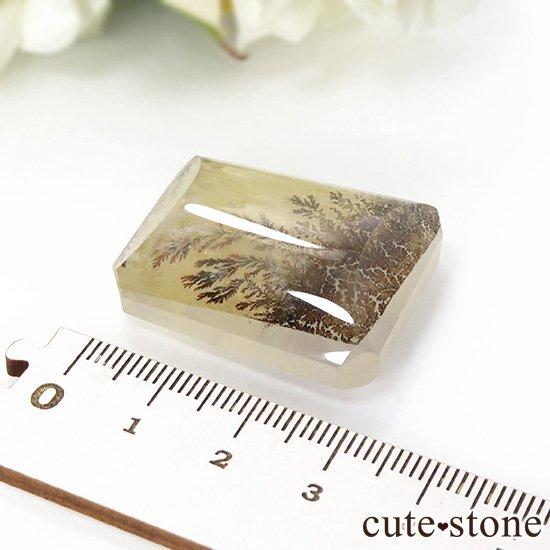マダガスカル産 デンドリティッククォーツのルース 18.6gの写真1 cute stone