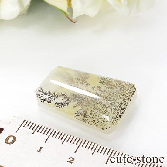 マダガスカル産 デンドリティッククォーツのルース 11.1gの写真1 cute stone