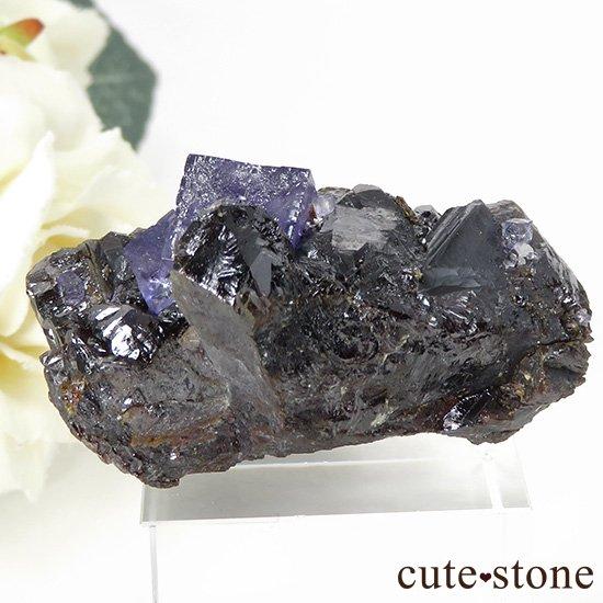 アメリカ エルムウッド鉱山産 パープルブルーフローライトの原石 44gの写真0 cute stone