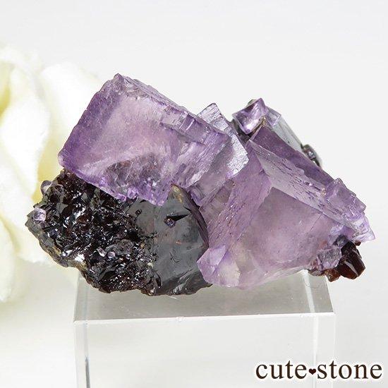アメリカ エルムウッド鉱山産 パープルレッドフローライトの原石 41gの写真0 cute stone
