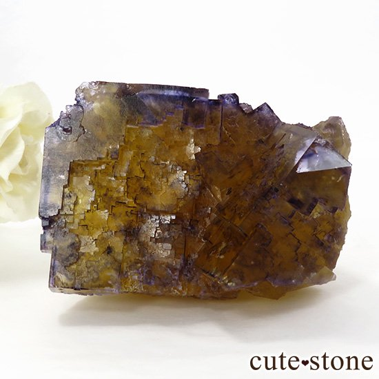イリノイ州Denton Mine産 パープル×イエローフローライト(蛍石)の原石 264gの写真0 cute stone