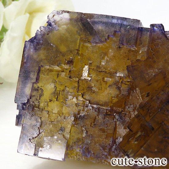イリノイ州Denton Mine産 パープル×イエローフローライト(蛍石)の原石 264gの写真3 cute stone