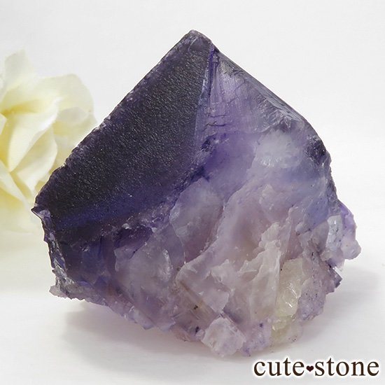 イリノイ州Denton Mine産 パープル×イエローフローライト(蛍石)の原石 195gの写真1 cute stone