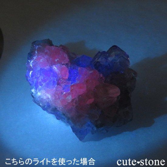 【ハイパワータイプ】蛍光鉱物の鑑賞に!LEDブラックライト(UV365nm)の写真4 cute stone