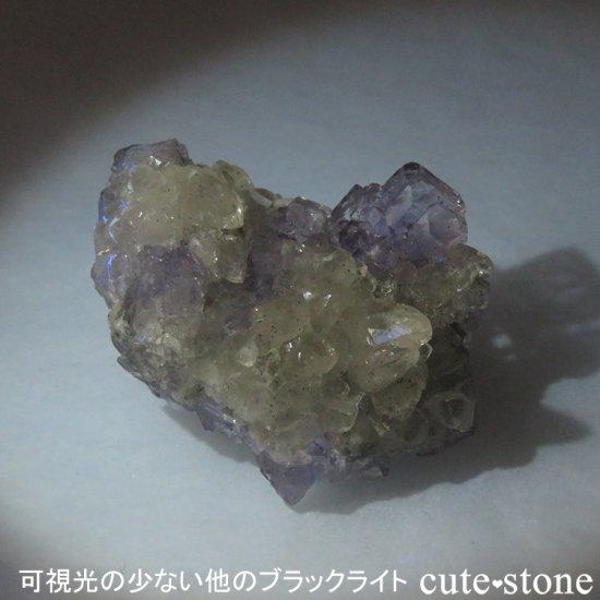 【ハイパワータイプ】蛍光鉱物の鑑賞に!LEDブラックライト(UV365nm)の写真5 cute stone