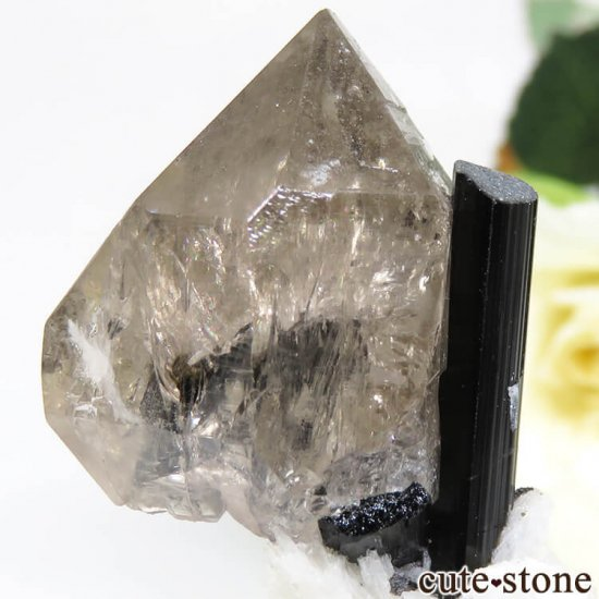 パキスタン スカルドゥ産 ブラックトルマリン&スモーキークォーツの原石 22.2gの写真3 cute stone