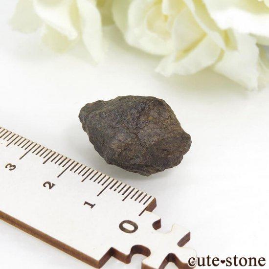サハラNWA869隕石の標本 10gの写真2 cute stone