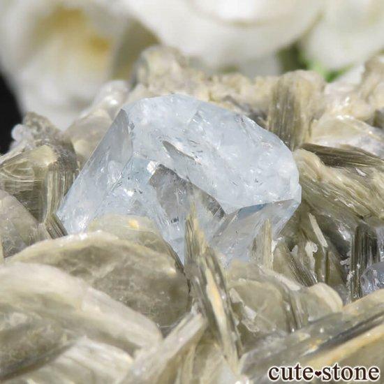 パキスタン産 アクアマリンの母岩付き結晶(原石) 224gの写真7 cute stone