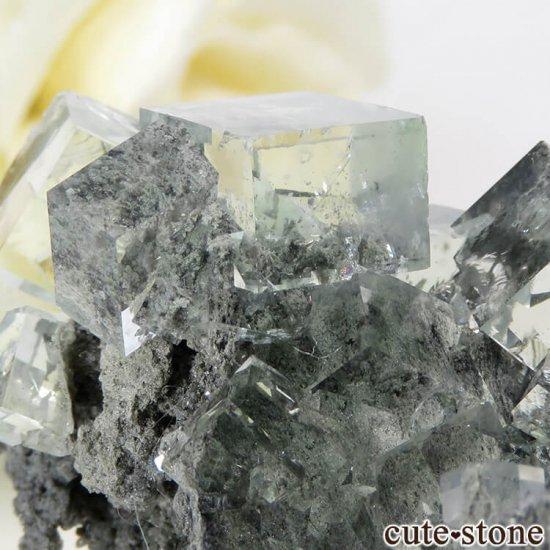 中国 Xianghualing Mine産 グリーンフローライトの母岩付き結晶(原石) 31gの写真4 cute stone