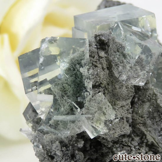 中国 Xianghualing Mine産 グリーンフローライトの母岩付き結晶(原石) 31gの写真5 cute stone