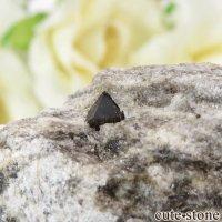 スペイン産 高温型モリオン(黒水晶・カンゴーム)の母岩付き原石 16.7gの画像