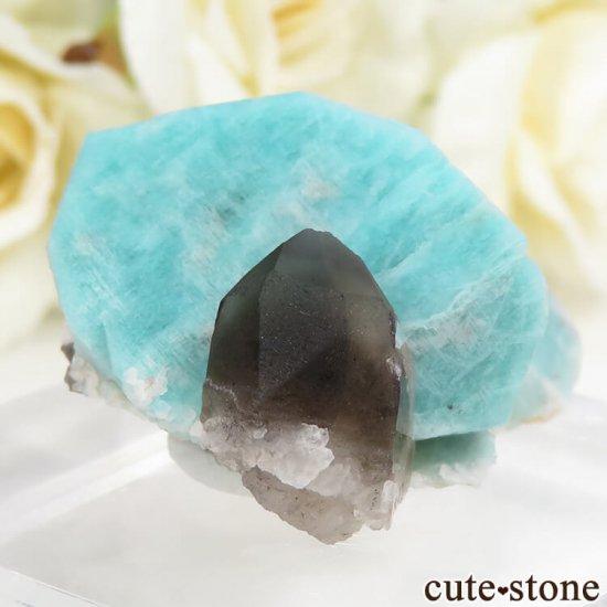 コロラド州 Smoky Hawk claim産のアマゾナイト&スモーキークォーツ 原石 の写真0 cute stone