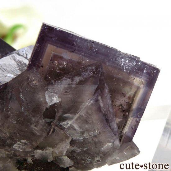 イングランド(イギリス) グリーンローズ産のパープルフローライトの原石 87.5gの写真4 cute stone