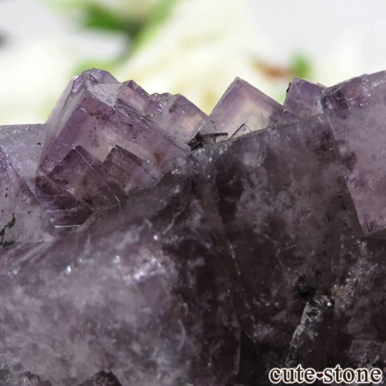 イングランド(イギリス) グリーンローズ産のパープルフローライトの原石 47gの写真4 cute stone