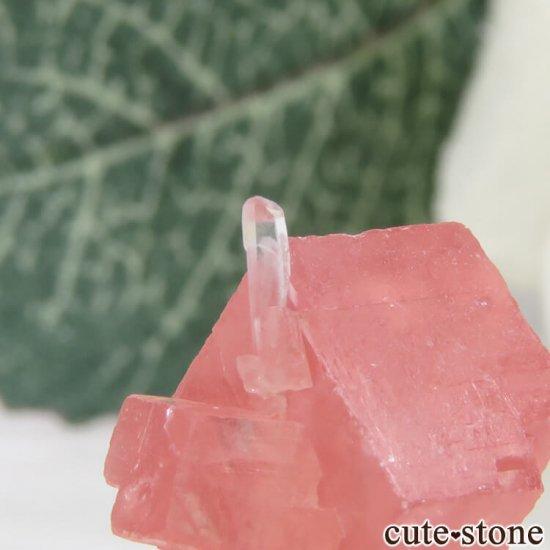 コロラド スイートホーム鉱山産のロードクロサイト&クォーツの原石 1.3gの写真4 cute stone