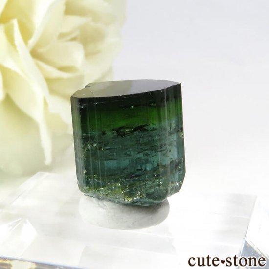 ブラジル ミナスジェライス州産 バイカラートルマリン(ブルー・グリーン)の結晶 2.7gの写真0 cute stone
