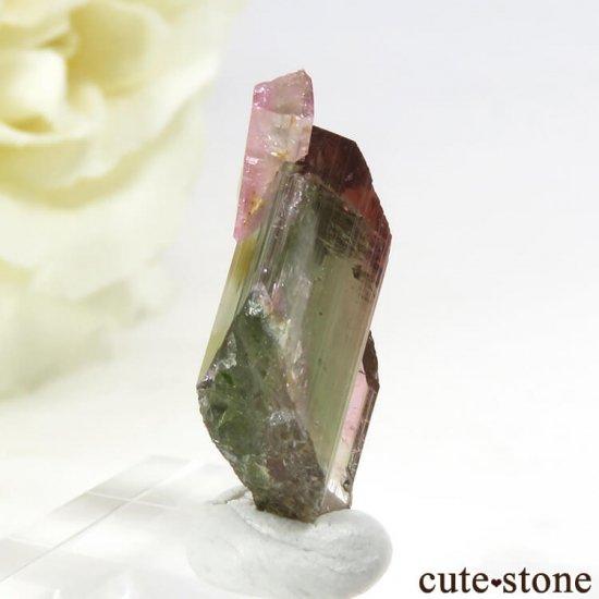 マダガスカル産 バイカラートルマリンの結晶 1.2gの写真0 cute stone