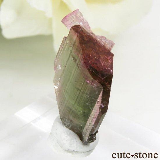 マダガスカル産 バイカラートルマリンの結晶 1.2gの写真1 cute stone